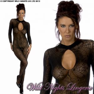 SEXY Cobweb Lace Long Sleeve Catsuit